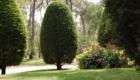 Jardin Maison d'hôte Le Touquet